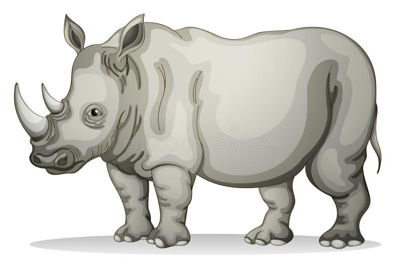 Ρινόκερος ελεύθερη απεικόνιση δικαιώματος