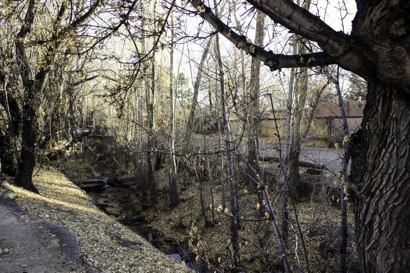Ροή του ποταμού στοκ εικόνες