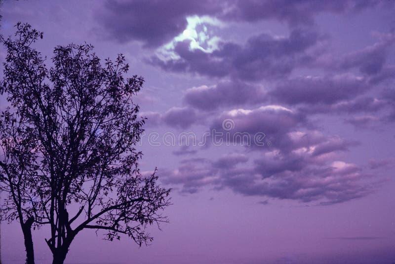 ροδανιλίνης ηλιοβασίλεμα σύννεφων στοκ εικόνα με δικαίωμα ελεύθερης χρήσης