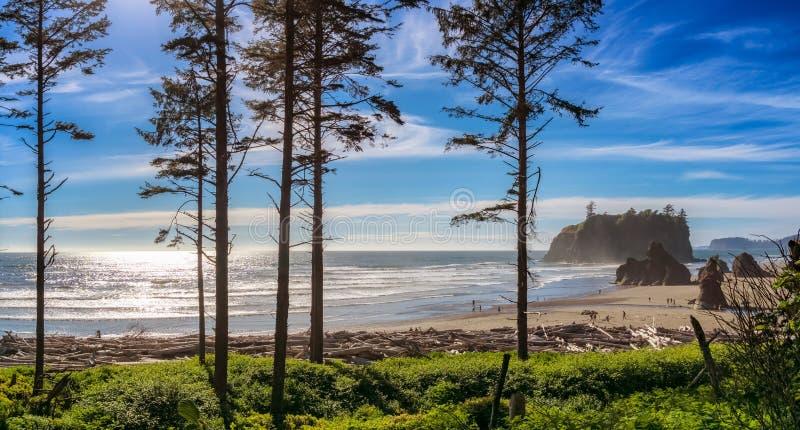 Ροδοκόκκινο τοπίο παραλιών, πολιτεία της Washington, ΗΠΑ στοκ εικόνες με δικαίωμα ελεύθερης χρήσης