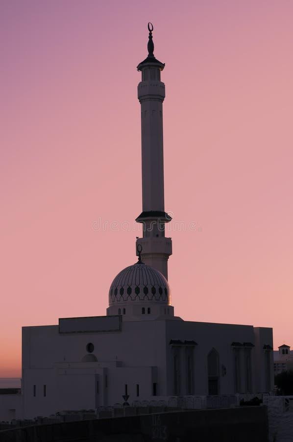 Download ροζ μουσουλμανικών τεμενών στοκ εικόνες. εικόνα από πύλη - 22789634