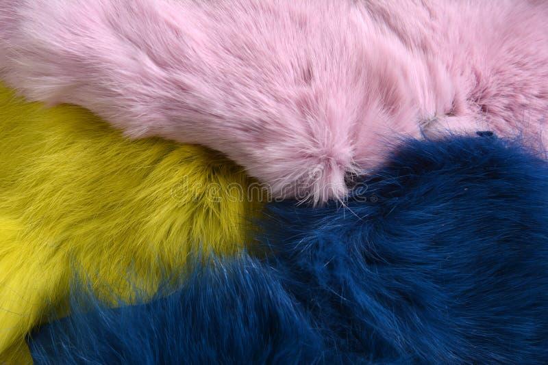 Ροζ μπλε και κίτρινο φόντο γούνας κουνελιού στο ξύλινο τραπέζι στοκ εικόνες