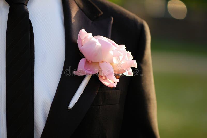 ροζ νεόνυμφων μπουτονιε&r στοκ εικόνες