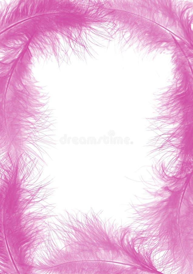 ροζ πλαισίων φτερών στοκ φωτογραφία με δικαίωμα ελεύθερης χρήσης