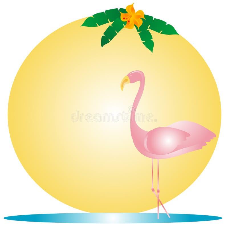 ροζ φλαμίγκο ελεύθερη απεικόνιση δικαιώματος