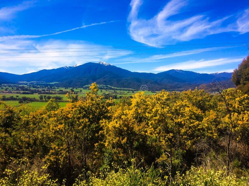 Ρομαντική άποψη των όμορφων βουνών στον ορίζοντα στην περιοχή βουνών στην Αυστραλία στοκ φωτογραφία με δικαίωμα ελεύθερης χρήσης