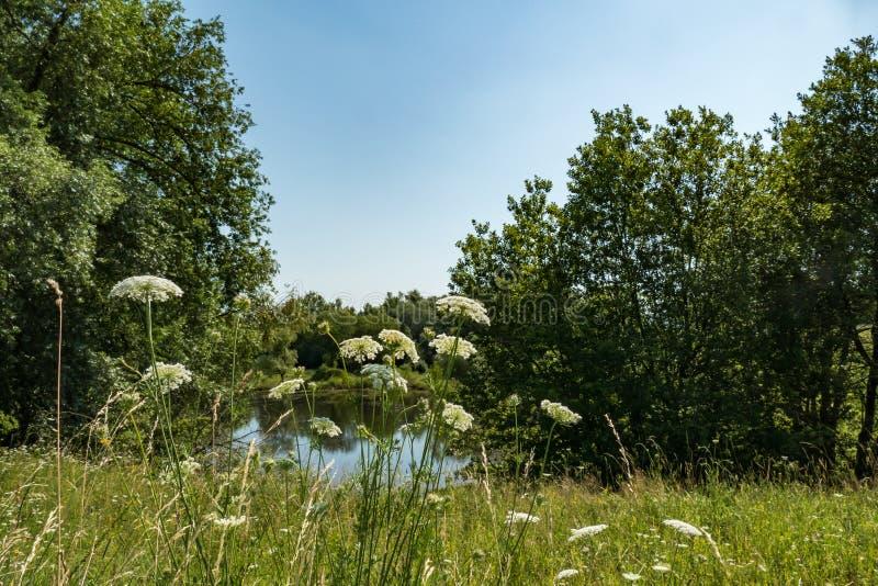 Ρομαντική λίμνη στοκ εικόνες