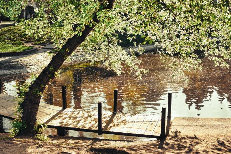 Ρομαντική γέφυρα για πεζούς με τις σκιές και τα χρώματα στοκ εικόνα