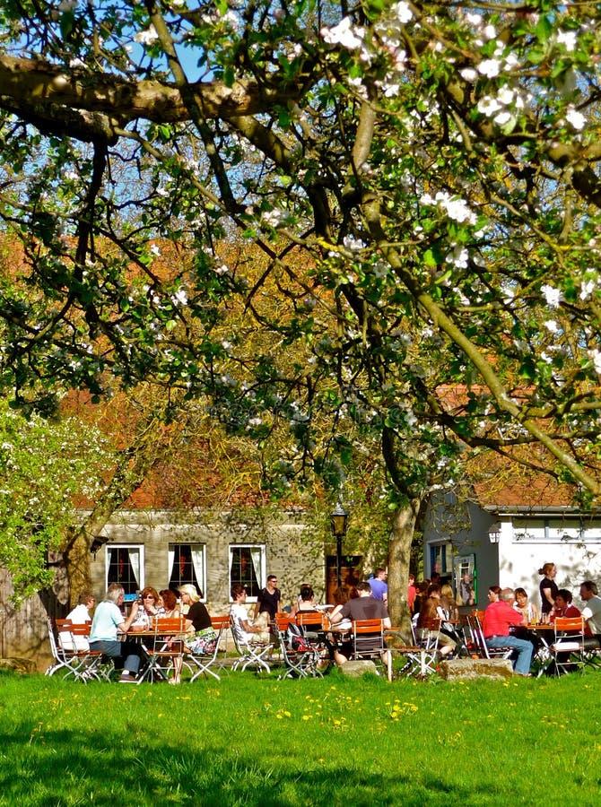 Ρομαντικός βαυαρικός κήπος μπύρας την άνοιξη