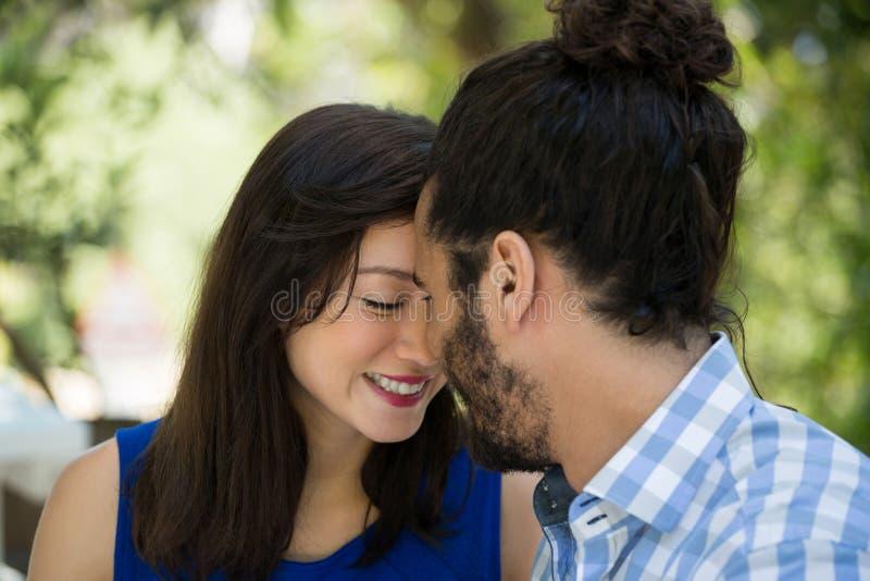 Ρομαντικός ελεύθερος χρόνος εξόδων ζευγών στο πάρκο στοκ φωτογραφία