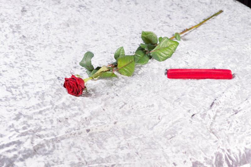 Ρομαντικός κόκκινος αυξήθηκε και δώρο counterpane στοκ εικόνα
