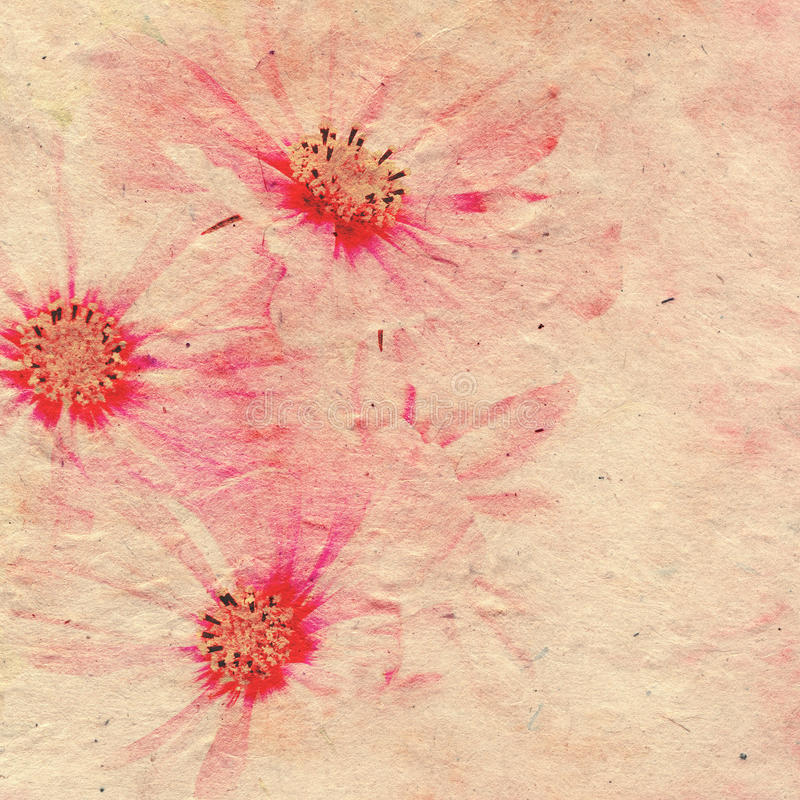 Ρομαντικό έγγραφο λουλουδιών καρτών στοκ εικόνες με δικαίωμα ελεύθερης χρήσης