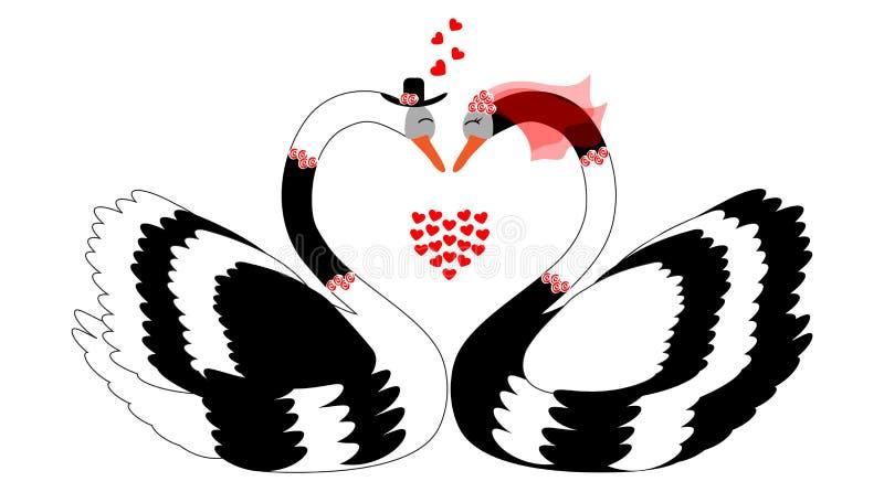 Ρομαντικό ζεύγος κύκνων διανυσματική απεικόνιση