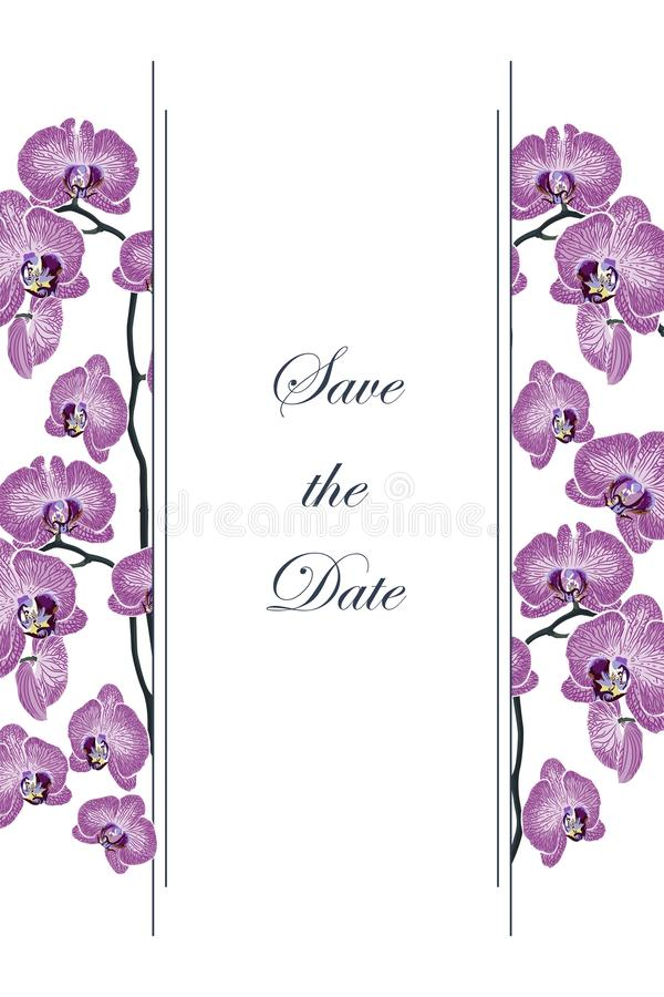 Ρομαντικό σχέδιο για τα προϊόντα γυναικών διανυσματική απεικόνιση