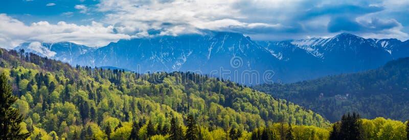 Ρουμανία, Predeal τα χιονώδη βουνά Bucegi και τα πράσινα δάση στη βάση τους που βλέπει από Predeal στοκ φωτογραφία με δικαίωμα ελεύθερης χρήσης