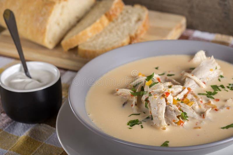 Ρουμανική σούπα κοτόπουλου που ονομάζεται Ciorba Radauteana στοκ εικόνα