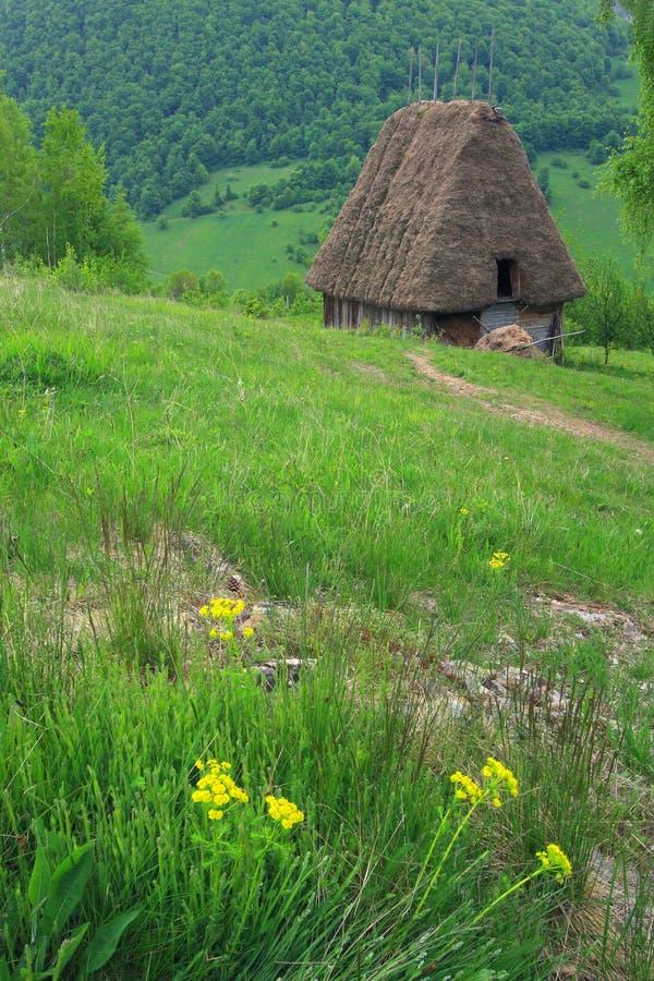 ρουμανικός παραδοσιακός εξοχικών σπιτιών στοκ εικόνα με δικαίωμα ελεύθερης χρήσης