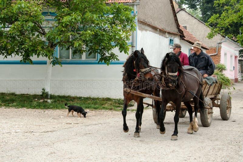 Ρουμανικό Banat στοκ φωτογραφία με δικαίωμα ελεύθερης χρήσης