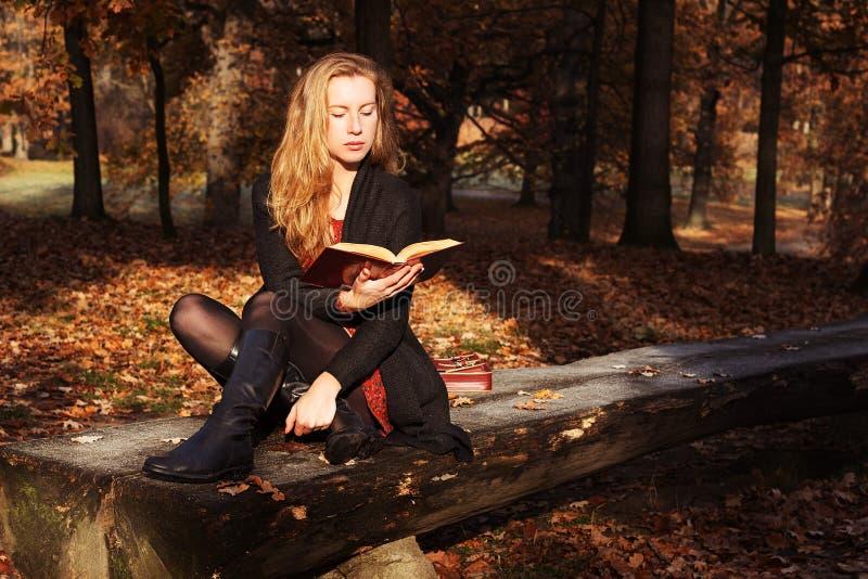 ροδανιλίνη φθινοπώρου asters πολύ ροζ διάθεσης Νέα όμορφη γυναίκα που διαβάζει ένα βιβλίο στο πάρκο το φθινόπωρο στοκ εικόνες