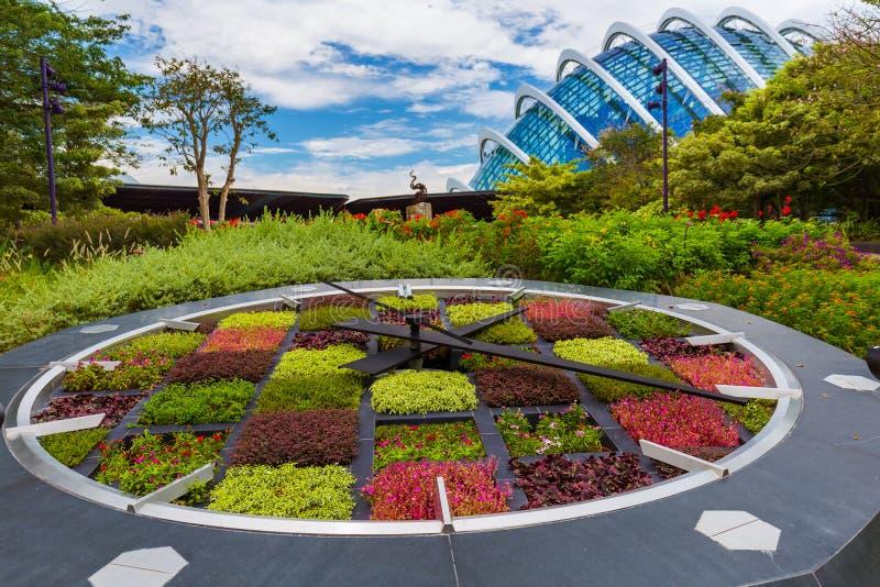 Ρολόι λουλουδιών στους κήπους πάρκων από τον κόλπο στη Σιγκαπούρη στοκ φωτογραφία με δικαίωμα ελεύθερης χρήσης