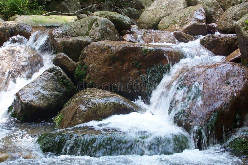 Ρυάκι βουνών στοκ φωτογραφίες με δικαίωμα ελεύθερης χρήσης