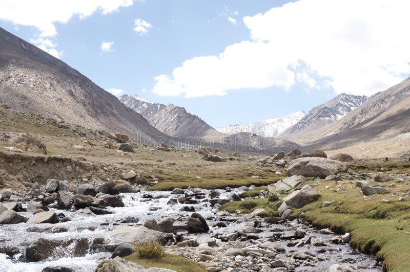 ρυάκι γλυκού νερού στην κοιλάδα nubra στοκ εικόνα με δικαίωμα ελεύθερης χρήσης