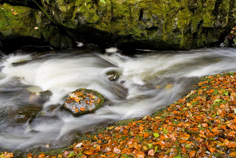 ρυάκι φθινοπώρου που κρύ&beta στοκ φωτογραφία
