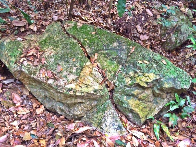 Ρωγμές στην επάνθιση βράχου γρανίτη στοκ φωτογραφία με δικαίωμα ελεύθερης χρήσης