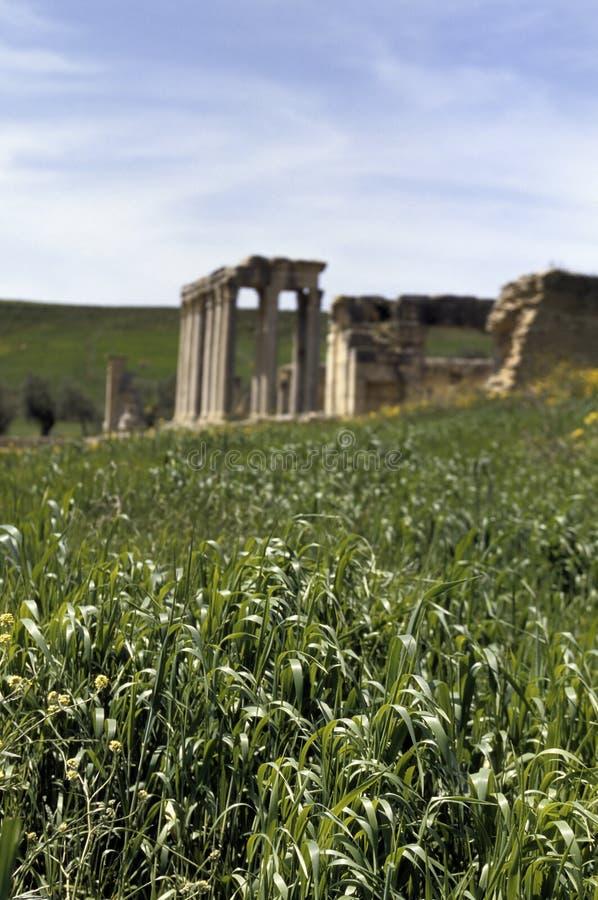 Ρωμαίος καταστρέφει την Τ&up στοκ φωτογραφίες