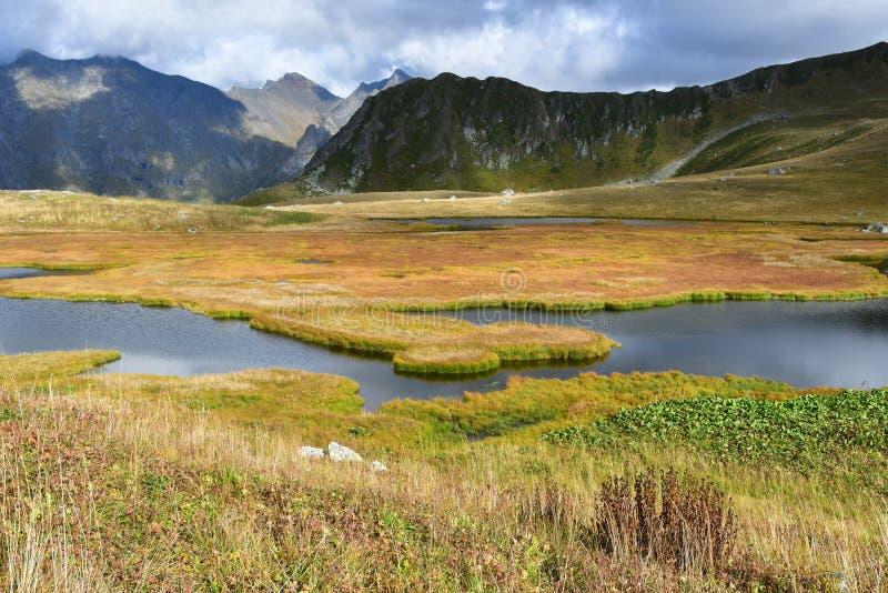 Ρωσία, χρώματα του φθινοπώρου Arkhyz Μικρή λίμνη στον τομέα Zagedanskoye Pyatiozerye το Σεπτέμβριο στοκ εικόνες