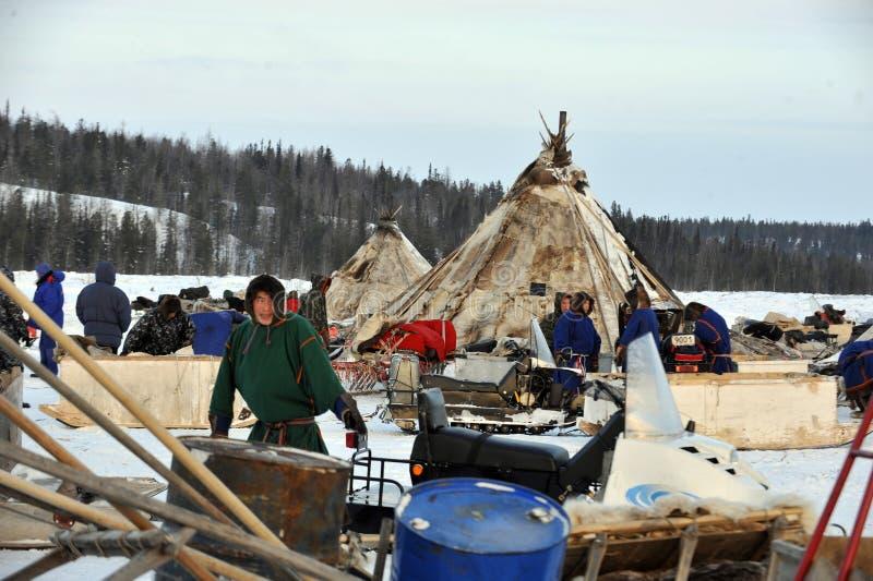 Ρωσικός αρκτικός αυτόχθων! στοκ φωτογραφία με δικαίωμα ελεύθερης χρήσης