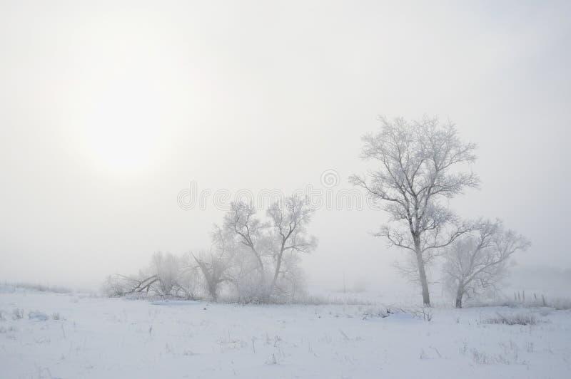 Ρωσικός χειμώνας 1 στοκ εικόνα με δικαίωμα ελεύθερης χρήσης