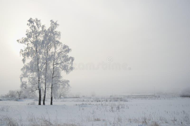 Ρωσικός χειμώνας 3 στοκ εικόνες με δικαίωμα ελεύθερης χρήσης