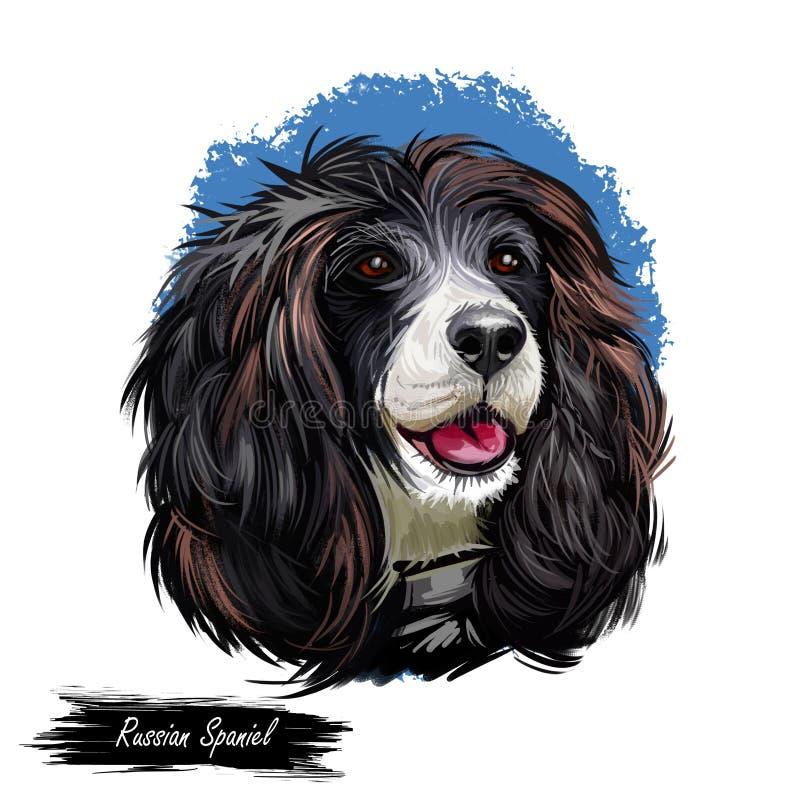 Ρωσικό πορτρέτο σκυλιών σπανιέλ που απομονώνεται στο λευκό Η ψηφιακή απεικόνιση τέχνης για τον Ιστό, η τυπωμένη ύλη μπλουζών και  στοκ φωτογραφία