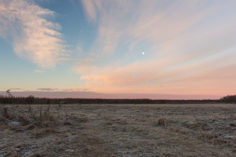 Ρωσικό πρωί επαρχίας Όμορφη χειμερινή ρόδινη ανατολή πέρα από το χιονώδη τομέα στοκ φωτογραφίες