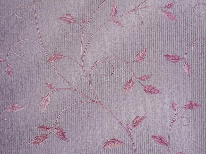 Ρόδινα λουλούδια κόσμου κάτω από το φως ήλιων με το φίλτρο χρώματος ανασκόπηση μαλακή Έννοια διακοπών ή ημέρας βαλεντίνων ` s στοκ φωτογραφία με δικαίωμα ελεύθερης χρήσης