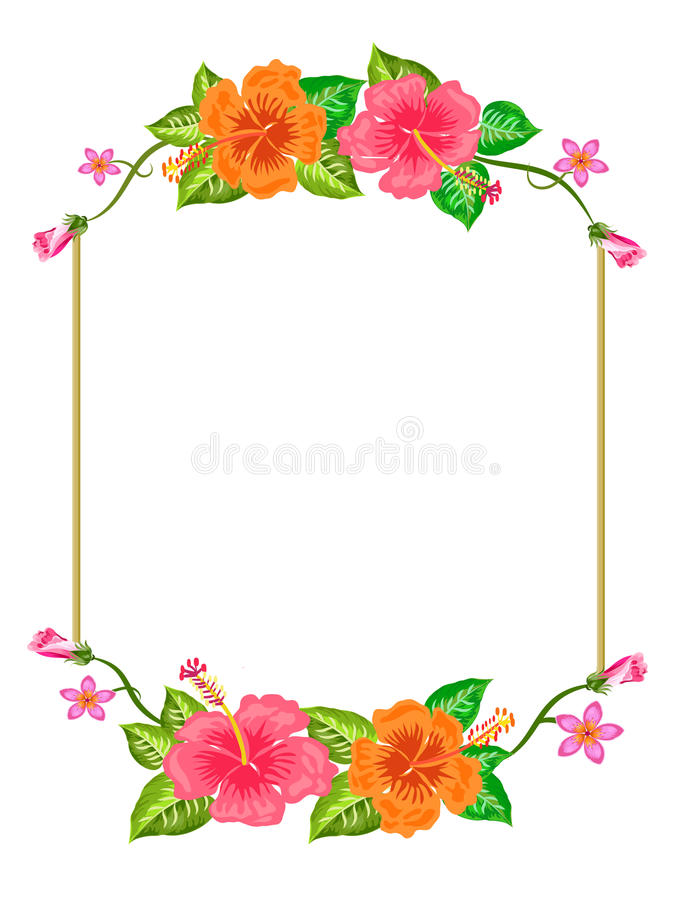 Ρόδινα πορτοκαλιά σύνορα λουλουδιών με τους οφθαλμούς στοκ φωτογραφία