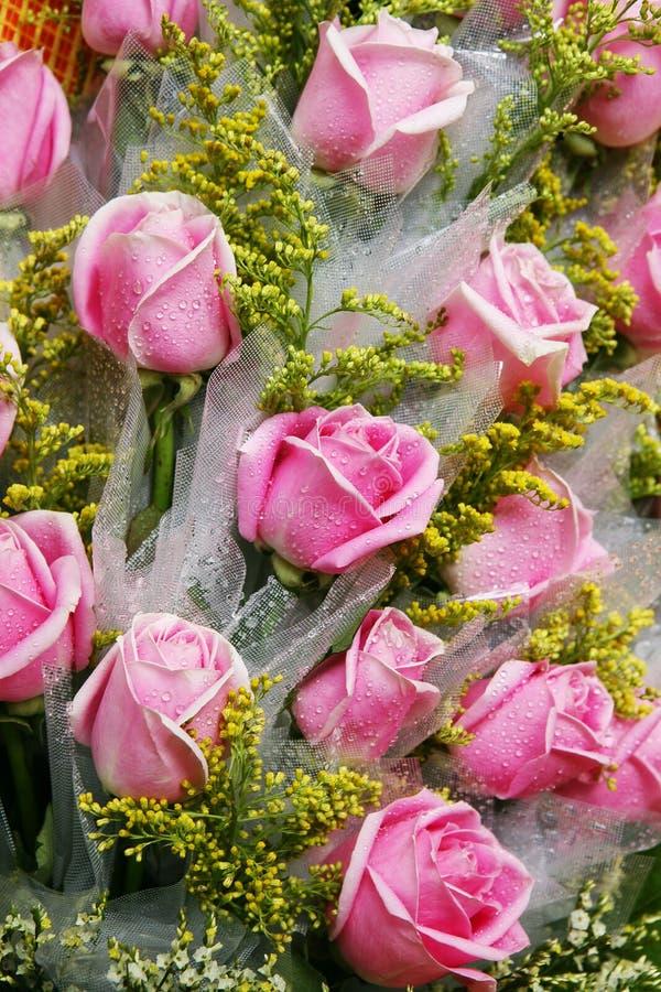 ρόδινα τριαντάφυλλα δεσμών στοκ φωτογραφίες με δικαίωμα ελεύθερης χρήσης