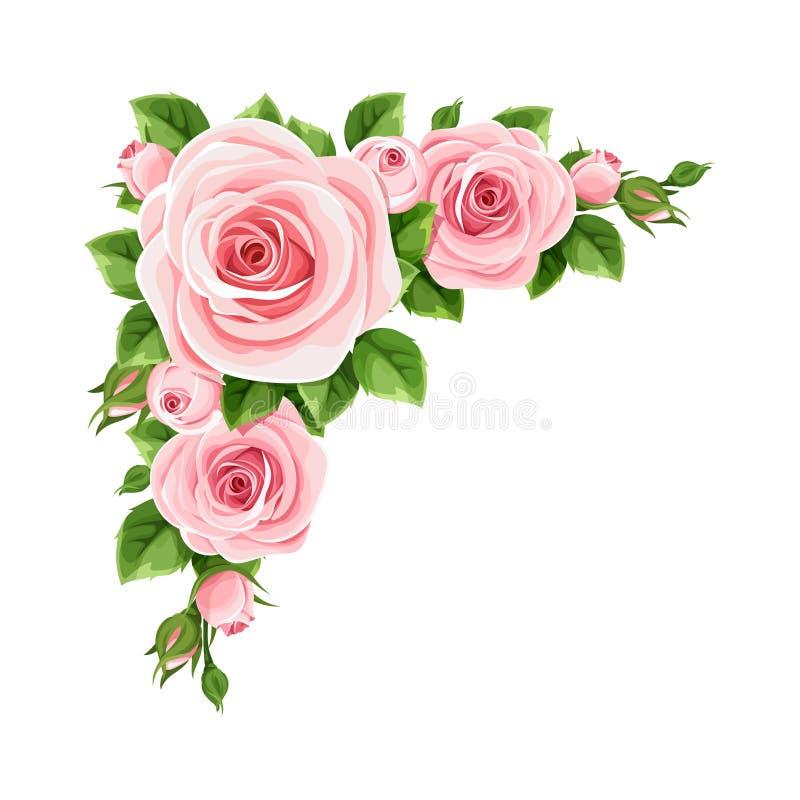 ρόδινα τριαντάφυλλα Διανυσματικό υπόβαθρο γωνιών ελεύθερη απεικόνιση δικαιώματος