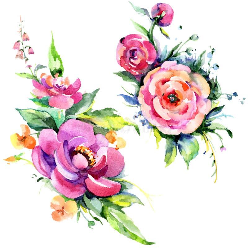 Ρόδινα peony flowes ανθοδεσμών Watercolor Floral βοτανικό λουλούδι Απομονωμένο στοιχείο απεικόνισης απεικόνιση αποθεμάτων