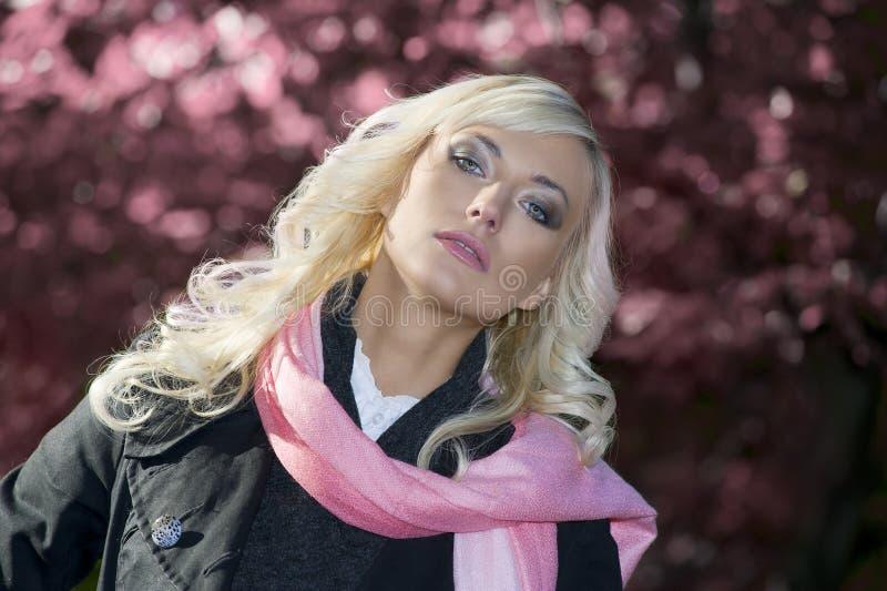 Download ρόδινη γυναίκα πορτρέτου στοκ εικόνα. εικόνα από τρίχωμα - 17058889