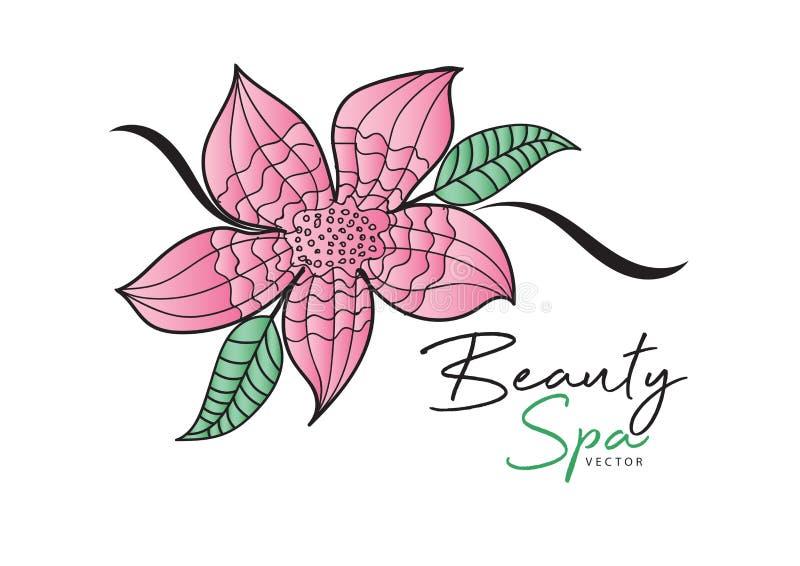 Ρόδινη διανυσματική απεικόνιση λουλουδιών σχέδιο λογότυπων πράσινο εικονίδιο φύλλων, στοιχείο για την ομορφιά και SPA απεικόνιση αποθεμάτων