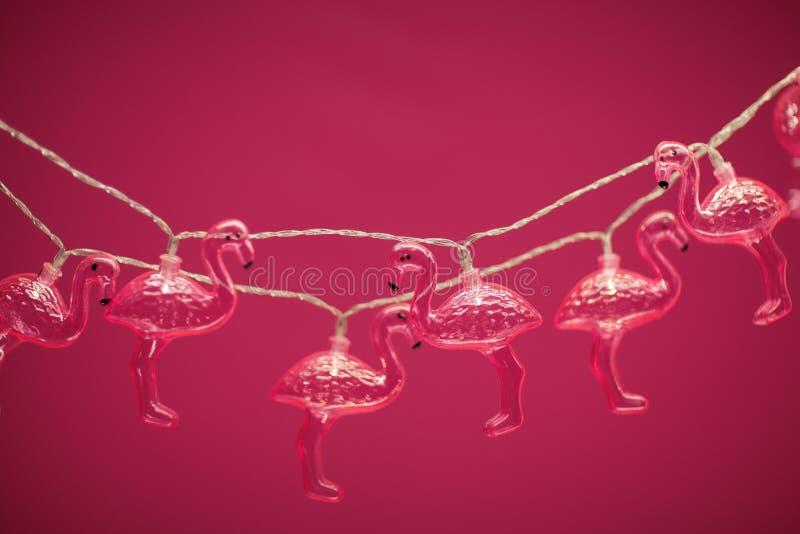 Ρόδινη ελαφριά αλυσίδα φλαμίγκο στο ροζ στοκ φωτογραφία με δικαίωμα ελεύθερης χρήσης