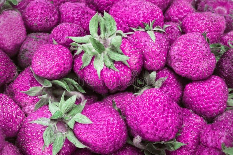 ρόδινη φράουλα στοκ φωτογραφίες