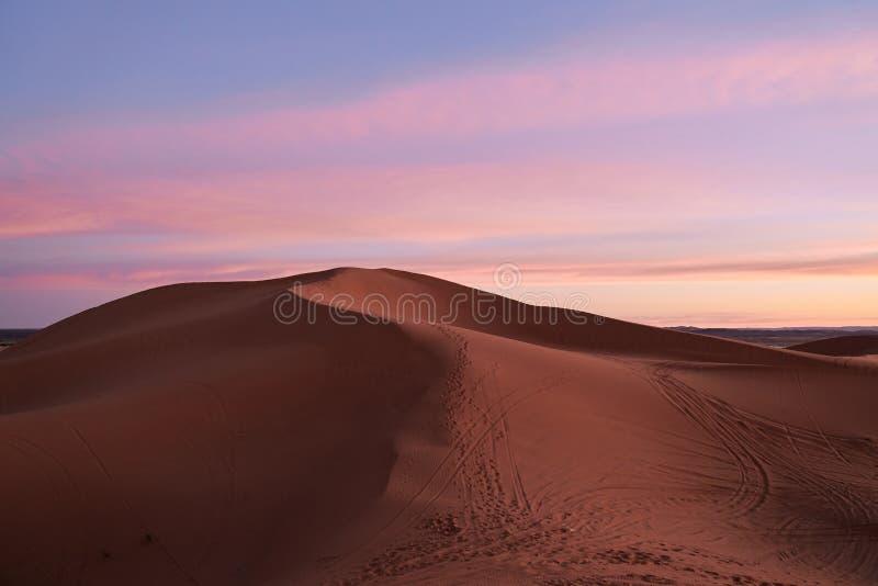 Ρόδινοι ουρανός και αμμόλοφοι στην έρημο Σαχάρας μετά από το ηλιοβασίλεμα στοκ φωτογραφίες με δικαίωμα ελεύθερης χρήσης