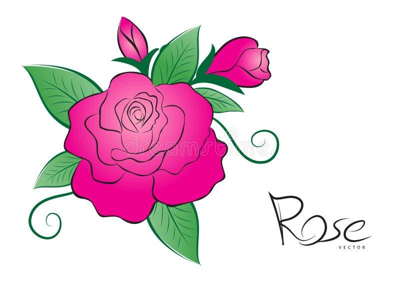 Ρόδινος αυξήθηκε διανυσματική απεικόνιση εκλεκτής ποιότητας ύφος λουλουδιών στο άσπρο υπόβαθρο για την κάρτα ημέρας βαλεντίνων, ύ απεικόνιση αποθεμάτων