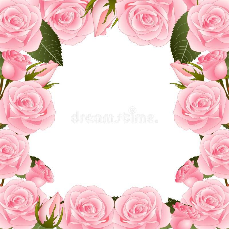 Ρόδινος αυξήθηκε σύνορα πλαισίων λουλουδιών η ανασκόπηση απομόνωσε το λευκό επίσης corel σύρετε το διάνυσμα απεικόνισης ελεύθερη απεικόνιση δικαιώματος