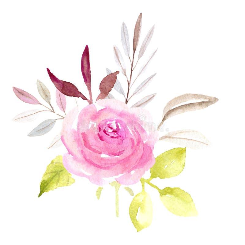 Ρόδινος ενιαίος αυξήθηκε λουλούδι απεικόνιση αποθεμάτων