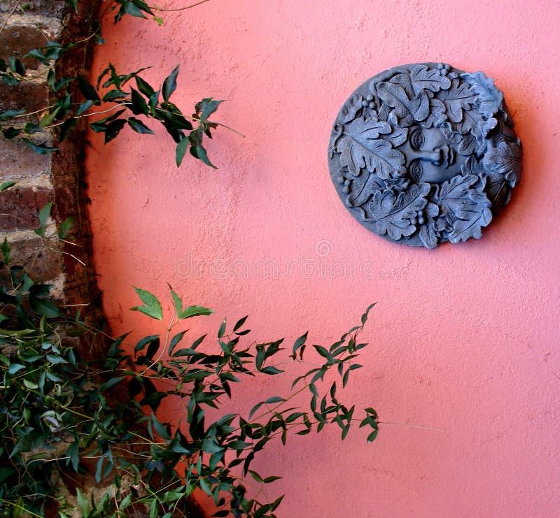 ρόδινος τοίχος κήπων στοκ εικόνες με δικαίωμα ελεύθερης χρήσης