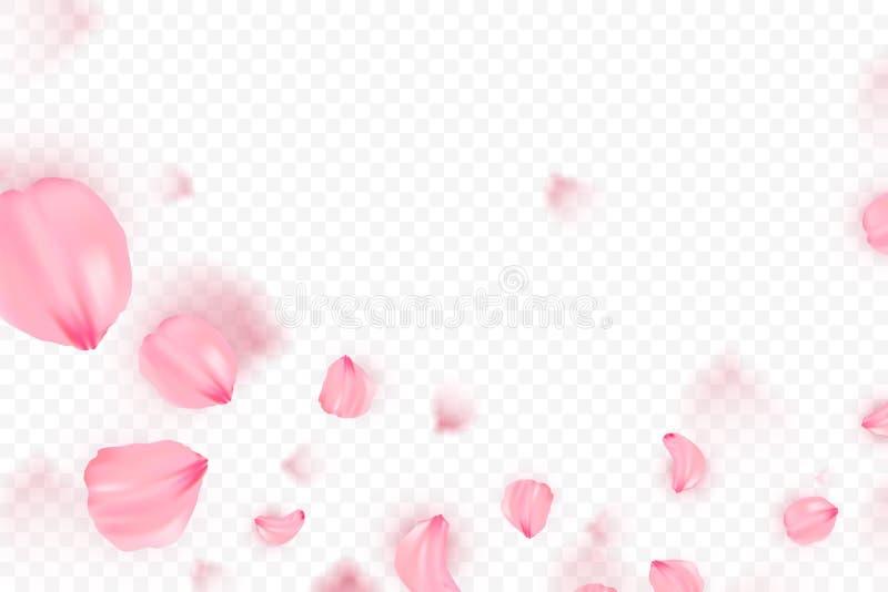 Ρόδινο διανυσματικό υπόβαθρο πετάλων sakura μειωμένο τρισδιάστατη ρομαντική απεικόνιση ελεύθερη απεικόνιση δικαιώματος